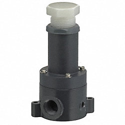 Relief Valve, 1/4 x 1/4In, FNPT, 5-100 psi
