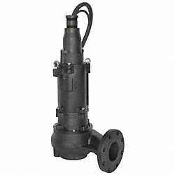 Sludge Pump, 7.5 HP, 230 Volts, 30.8 Amps
