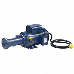 Progressive Cavity Pump, CI, 2 HP, 460VAC