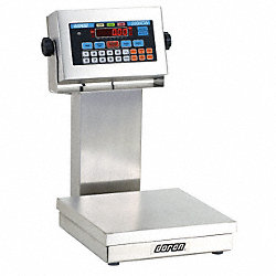 Checkweigher Scale, SS Pltfrm, 100 lb. Cap