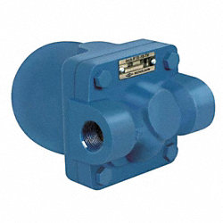 Steam Trap, PSI 65, 1/2 In FNPT