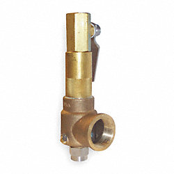 Pop Safety Valve, 1 x 1 1/4 In, 500 PSI