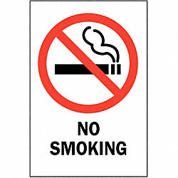 No Smoking Sign, 10 x 7In, R and BK/WHT