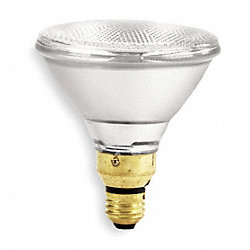 Halogen Floodlight, PAR38, 60W