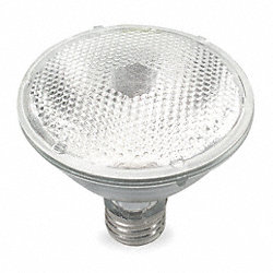 Halogen Floodlight, PAR30, 50W