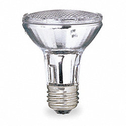 Halogen Floodlight, PAR20, 50W