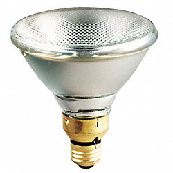 Halogen Floodlight, PAR38, 67W