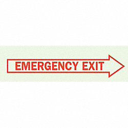 Emergency Exit Sign, 3-1/2 x 10In, R/GRN
