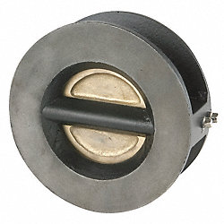 Double Disc Check Valve, 8 In, Flange, Iron