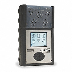 Multi-Gas Detector, 4 Gas, -4 to 131F, LCD
