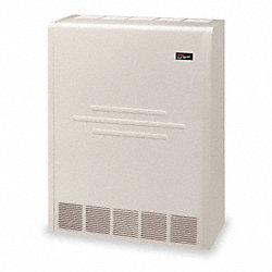 Wall Furnace, Direct Vent, 115V, LP, 25KBtuH