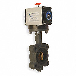 Butterfly Valve, Double Acting, 3 In