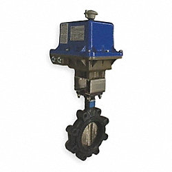 Butterfly Valve, Electronic, 2 1/2 In, Iron