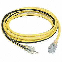 Extension Cord, Single Connector, 25Ft