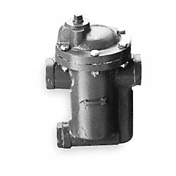 Steam Trap, Max OperatIng PSI 150, 3/4 In
