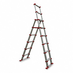 Telescoping Ladder, IA