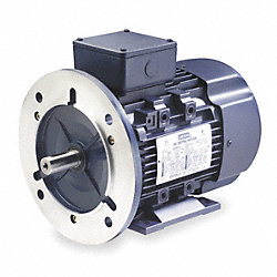 Metric Motor, 230/460V, Ball, REV, 60/50 Hz