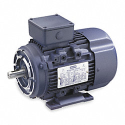 Metric Motor, Ball, 230/460V, 60/50 Hz