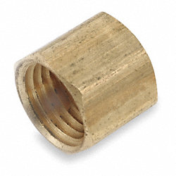 Cap, 1/4 In, FNPT, Brass