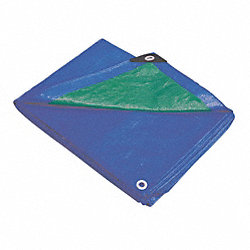 Tarp, Polyethylene, Blue/Green, 10x12Ft