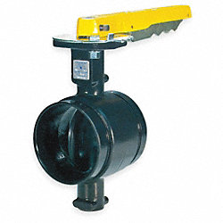 Butterfly Valve, Grooved, 4 In, Iron