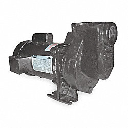 Centrifugal Pump, 1 HP, 1 Ph, 115/208-230