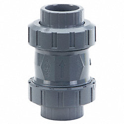 Check Valve, PVC and EPDM, 2 In