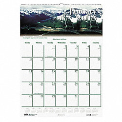 Monthly Wall Calendar, 12x16-1/2 In.