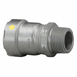Adapter, 1-1/2 x 1-1/2 In, P x MNPT