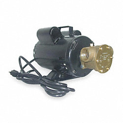 Pump, Bronze, 3/4 HP, 115/230V, 10.8/5.4Amps