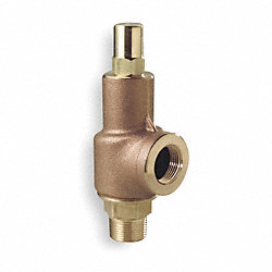 Adjustable Relief Valve, 2 In, 125 psi