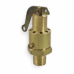 Safety Valve, 0.25 In, MNPT, Brass