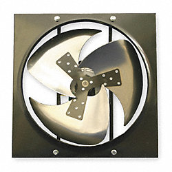 Exhaust Fan, 12 In, 115/230 V