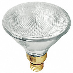 Halogen Floodlight, PAR38, 90/79W