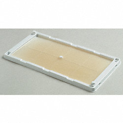 Mouse, Glue Trap, PK 2