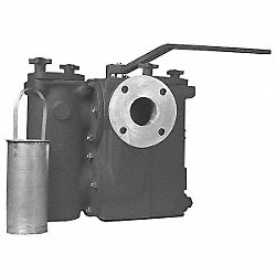 Duplex Strainer, 2 1/2 In, Flanged, CI
