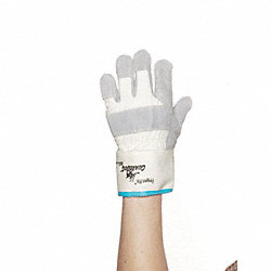 Cut Resistant Gloves, Gray/White, 2XL, PR