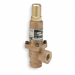 Back Pressure Valve, Bronze, 1/2 In