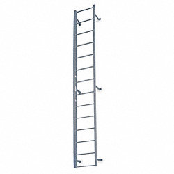 Fixed Ladder, 16 ft. 3 In H, Steel