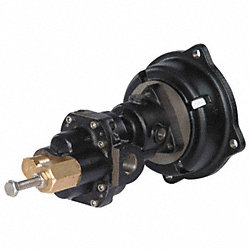 Rotary Gear Pump Head, 3/8 In., 3/4 HP