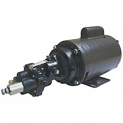 Rotary Gear Pump, Cast Iron, 2 HP, 1 Ph