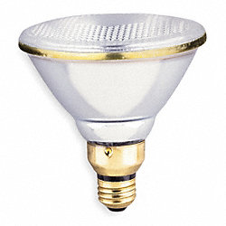 Incandescent Spotlight, PAR38, 150W