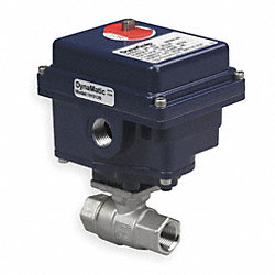 Ball Valve, 3/4 In FNPT, 115 Volt, SS