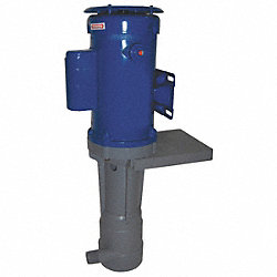 Pump, Vertical, 3/4 HP, 115V