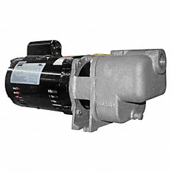 Centrifugal Pump, 1/3 HP, ODP, 1 Ph