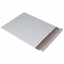 Mailer Envelope, 9-3/4 In. L, PK 100