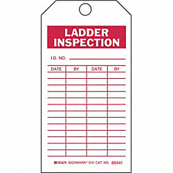 Lad Inspection Tag, 5-3/4 x 3 In, Brs, PK10