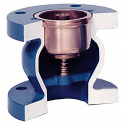 Check Valve, 6 In, Flanged, Cast Iron