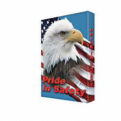 Sign, 24x18 In, Pride In Safety