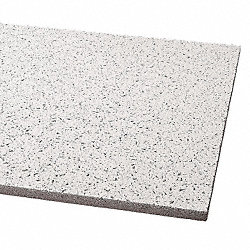Ceiling Tile, 24 x 48 In, 5/8 In T, Pk 8